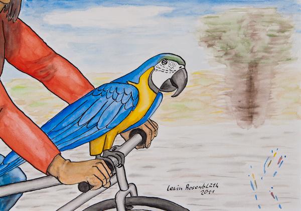 Der Knutschpapagei sitzt auf einem Fahrradlenker