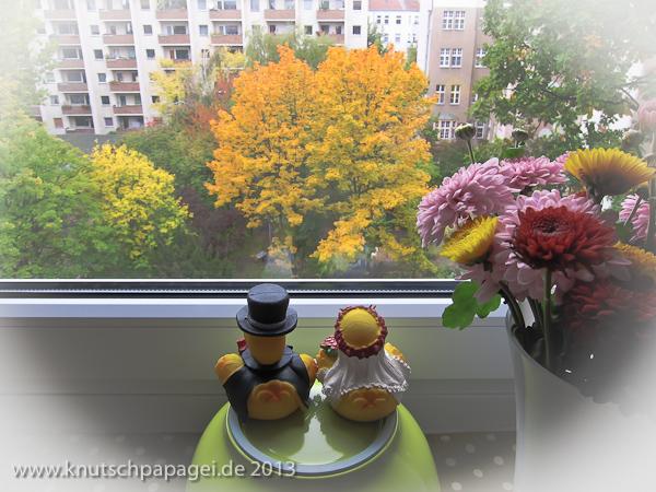 Die Hochzeitsentchen betrachten verzückt aus dem Küchenfenster ihrer Wohnung den Herbst in Berlin